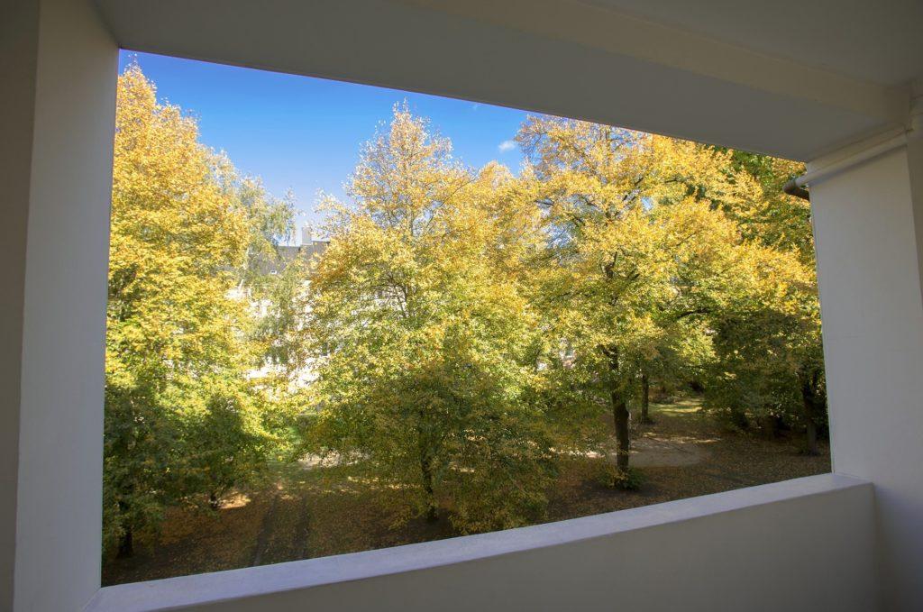Blick vom Balkon auf gelblich gefärbte Herbstbäume