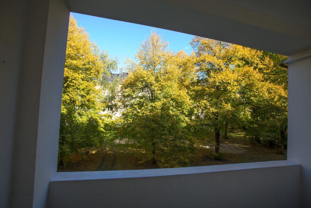 Blick vom überdachten Balkon auf einen Innenhof mit großen, alten Bäumen