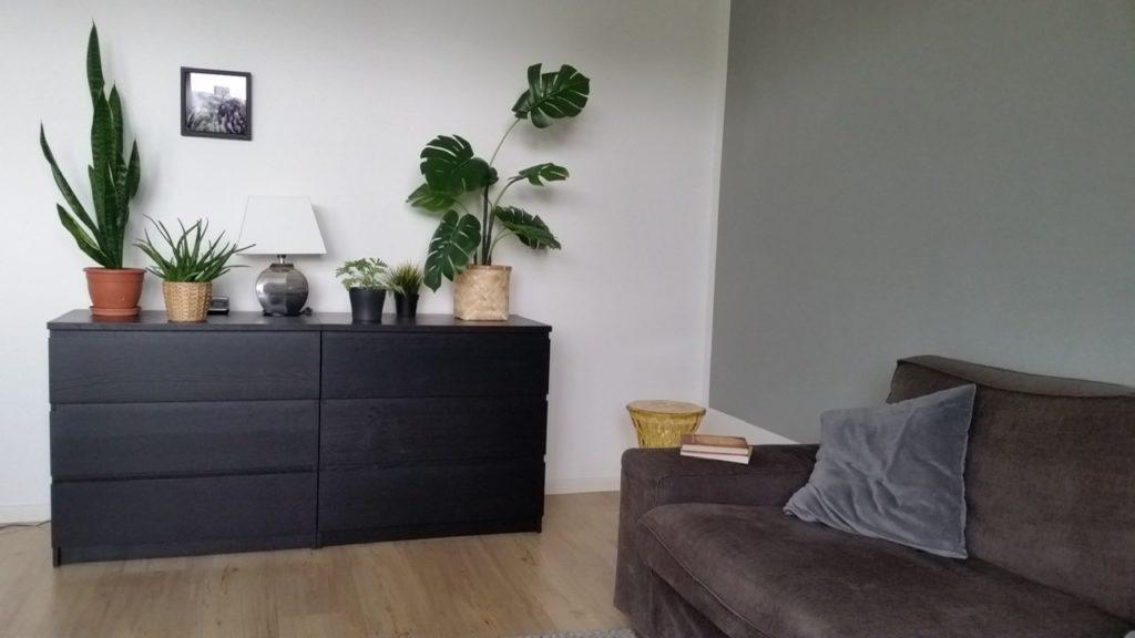 Wohnzimmer mit geradeaus schwarzer Kommode auf der mehrere Pflanzen stehen und mittig eine kleine Tischlampe. Am rechten Bildrand ansatzweise ein braunes Sofa.