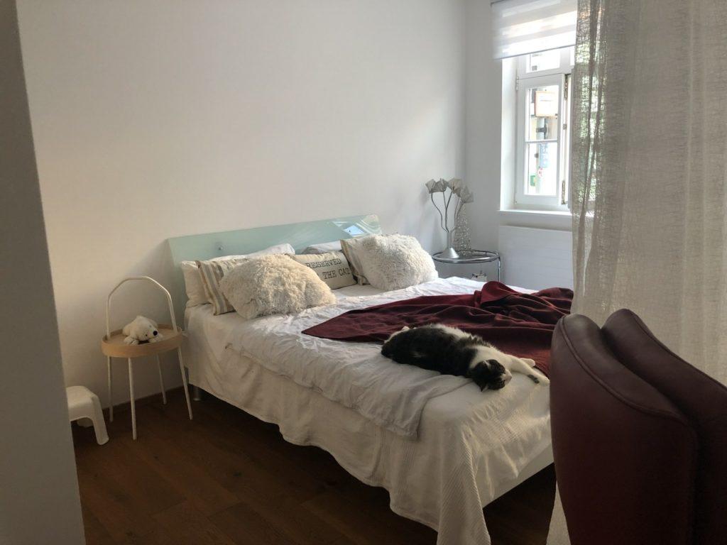 Schlafbereich: Doppelbett mit mehreren Kissen. Auf dem Bett liegt eine Katze