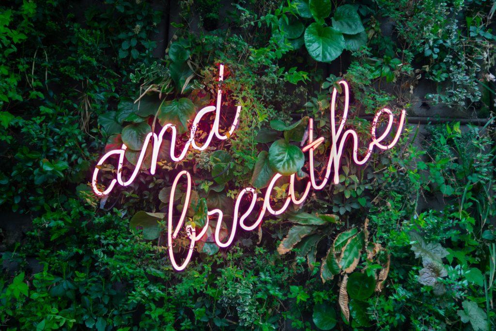Grüne Blätter von Bäumen mit dem Schriftzug: and breathe